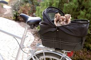 Hunde Fahrradtasche _ titelbild